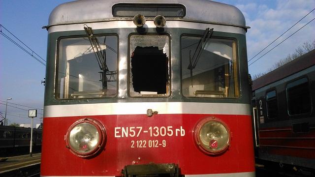 Kolizja pociągu z… bażantem