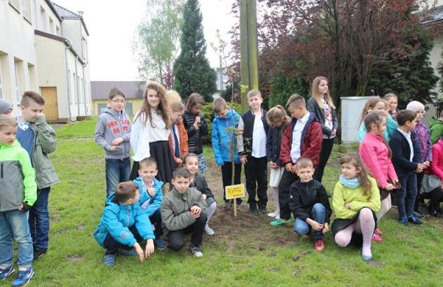 17 nowych drzewek w Rzozowie